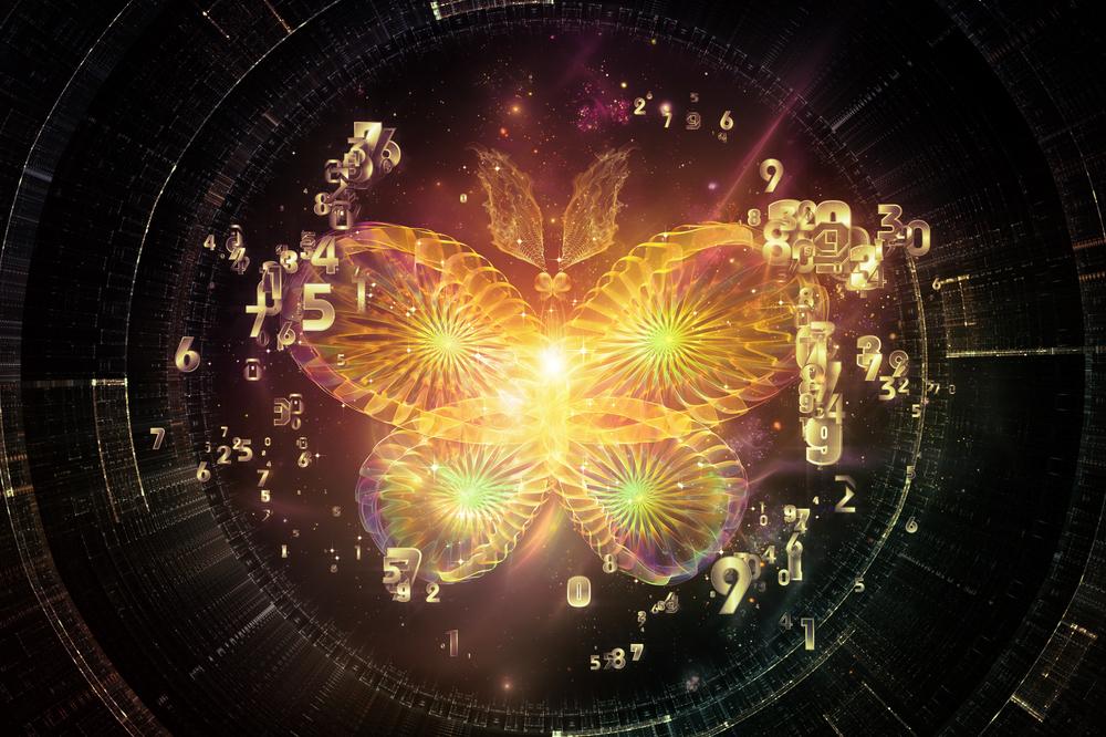 蝶の羽ばたきが未来を変える