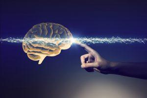 脳科学を使っている最新テレビCM