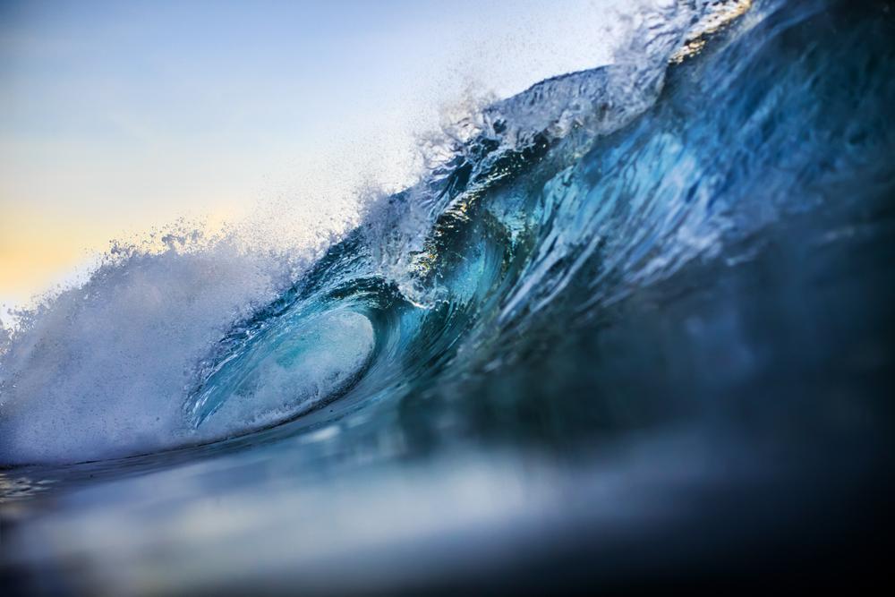 あなたは次の大波を乗り越えられるか?